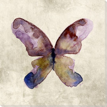 Colorful Butterfly 3 Wrapped Canvas Giclee Print Wall Art
