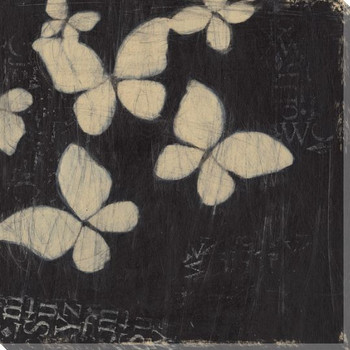 Chalkboard Butterflies II Wrapped Canvas Giclee Print Wall Art