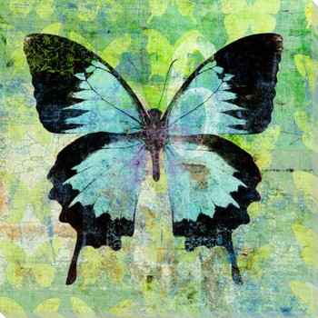 Colorful Butterflies 1 Wrapped Canvas Giclee Art Print Wall Art