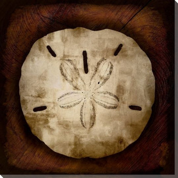 Burnished Sand Dollar Wrapped Canvas Giclee Print Wall Art