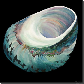 Jade Green Turbo Shell Wrapped Canvas Giclee Print Wall Art