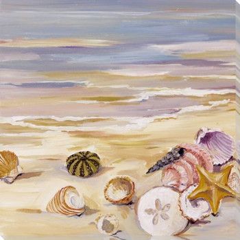 Shells Along the Beach Wrapped Canvas Giclee Print Wall Art
