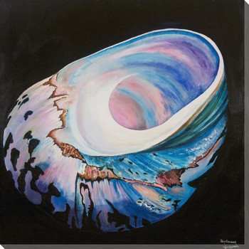 Pink & Blue Turbo Shell Wrapped Canvas Giclee Print Wall Art