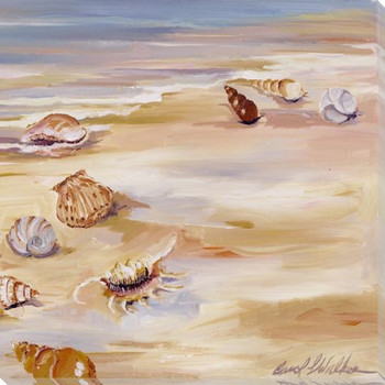 Shells Along the Beach II Wrapped Canvas Giclee Print Wall Art