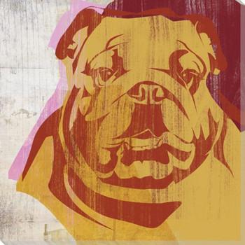 Pick the Bulldog Wrapped Canvas Giclee Print Wall Art