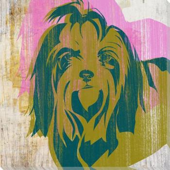 Pick the Shih Tzu Dog Wrapped Canvas Giclee Print Wall Art