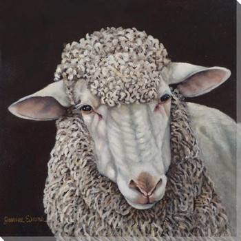 Sheep Wrapped Canvas Giclee Print Wall Art