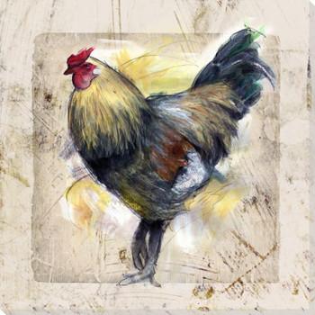 Chicken Scratch Bird Three Wrapped Canvas Giclee Print Wall Art