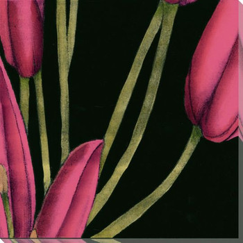 Pink Graphic Lily Flower MR Wrapped Canvas Giclee Print Wall Art