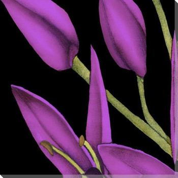 Violet Graphic Lily Flower ML Wrapped Canvas Giclee Print Wall Art