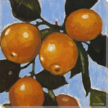 Vibrant Fruit Oranges II Wrapped Canvas Giclee Print Wall Art