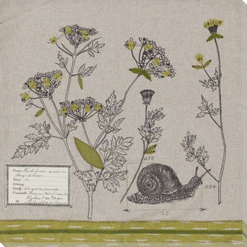 Field #3 Snail Wrapped Canvas Giclee Print Wall Art