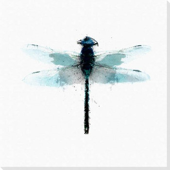 Inked Dragonfly 1 Wrapped Canvas Giclee Print Wall Art
