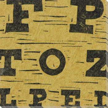 Alpha Letters Wrapped Canvas Giclee Print Wall Art