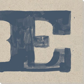 Painted Letter E Wrapped Canvas Giclee Print Wall Art