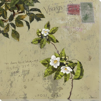 Postage III Wrapped Canvas Giclee Print Wall Art