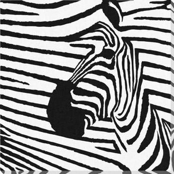 Zebra 2 Wrapped Canvas Giclee Print Wall Art