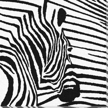 Zebra 3 Wrapped Canvas Giclee Print Wall Art
