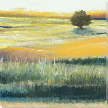 Golden Meadows I Wrapped Canvas Giclee Print Wall Art
