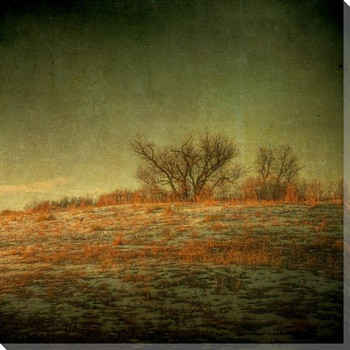 Scrub Oak Ridge Scenic Wrapped Canvas Giclee Print Wall Art