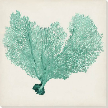Sea Fan VI Wrapped Canvas Giclee Print Wall Art