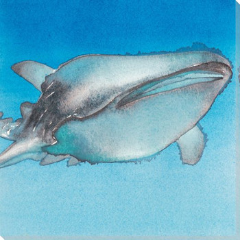 Whale Star Wrapped Canvas Giclee Print Wall Art