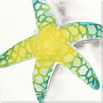 Green Star Fish Wrapped Canvas Giclee Print Wall Art