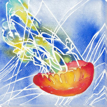Colorful Jellyfish 2 Wrapped Canvas Giclee Print Wall Art