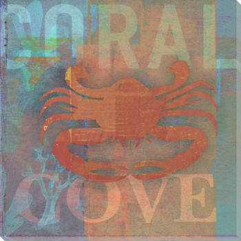 Coastal Catch Coral Cove Wrapped Canvas Giclee Print Wall Art
