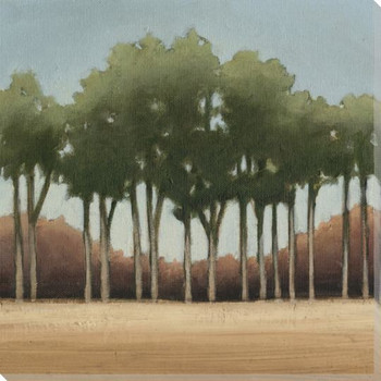 Stand of Trees II Wrapped Canvas Giclee Print Wall Art