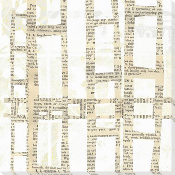 Encrypted Text Two Wrapped Canvas Giclee Print Wall Art