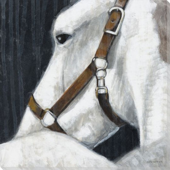 Glance Horse Wrapped Canvas Giclee Print Wall Art