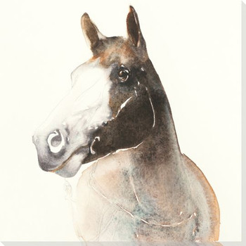 Chances Horse Wrapped Canvas Giclee Print Wall Art