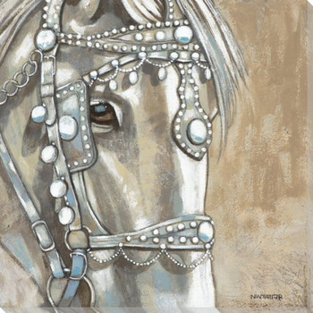 Dazzling Steed Horse I Wrapped Canvas Giclee Print Wall Art