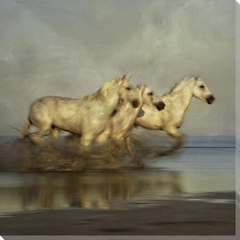 Three Horse Blur Nuriel Cloud Wrapped Canvas Giclee Art Print Wall Art