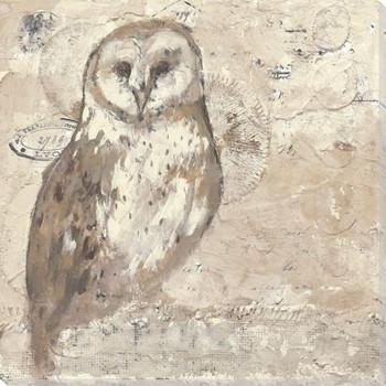 Owl Bird Wrapped Canvas Giclee Print Wall Art