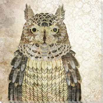 Owl Bird I Wrapped Canvas Giclee Print Wall Art