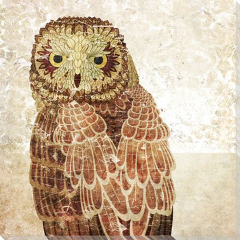 Owl Bird II Wrapped Canvas Giclee Print Wall Art