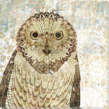 Owl Bird IV Wrapped Canvas Giclee Print Wall Art
