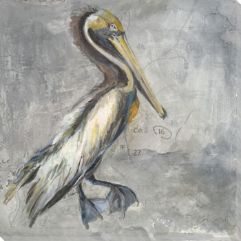 Pelican Bird Wrapped Canvas Giclee Print Wall Art