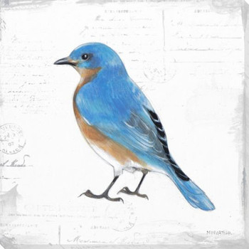 Bird Watcher IV Wrapped Canvas Giclee Print Wall Art