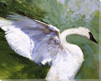 Grace Note Swan Bird Wrapped Canvas Giclee Print Wall Art