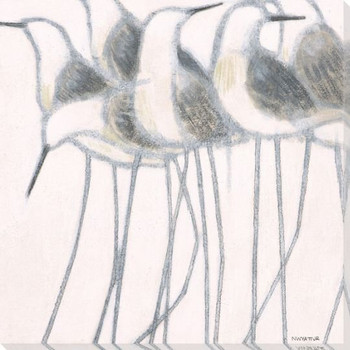 Whitewashed Sandpiper Birds II Wrapped Canvas Giclee Print