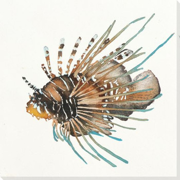 Lion Fish Wrapped Canvas Giclee Print Wall Art