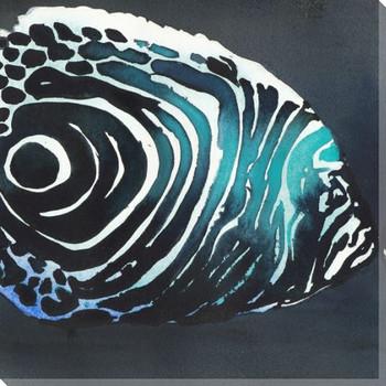 Zebra Fish Wrapped Canvas Giclee Print Wall Art