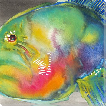 Parrot Fish Wrapped Canvas Giclee Print Wall Art
