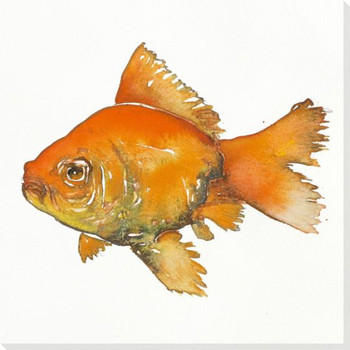 Goldie Goldfish Wrapped Canvas Giclee Print Wall Art