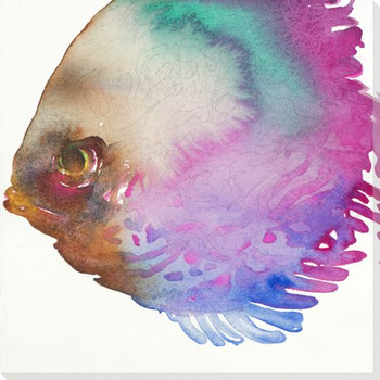 Determination Colorful Fish Wrapped Canvas Giclee Print Wall Art