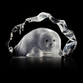 Baby Seal Hand Etched Crystal Sculpture by Mats Jonasson