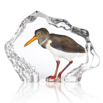 Black and White Sandpiper Bird Crystal Sculpture by Mats Jonasson